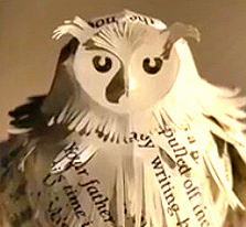 Hedwige, la chouette d'Harry Potter sur Pottermore